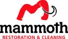 Mammoth Ohio